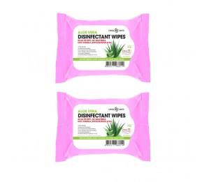 Dearderm Aloe Vera Disinfectant Wipes 30counts x 2pcs